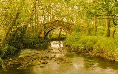 Hunters Sty Bridge