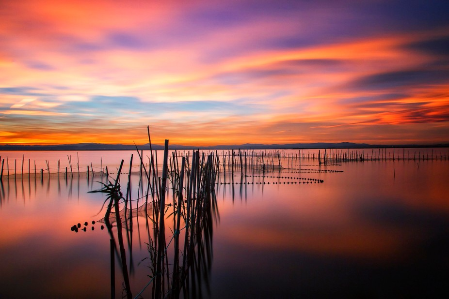 A explosion of colours on the sky. Take it at Albufera's Lake in Valencia (Spain) Really...