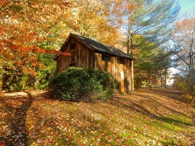 Shed in the Autumn Woods