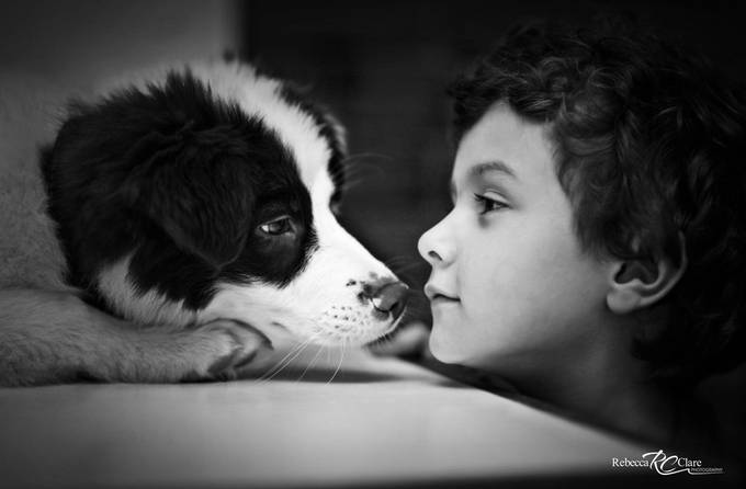 Best friends by rebeccaporter - Kids And Pets Photo Contest