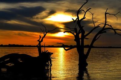 Sunset Lake Bonney.