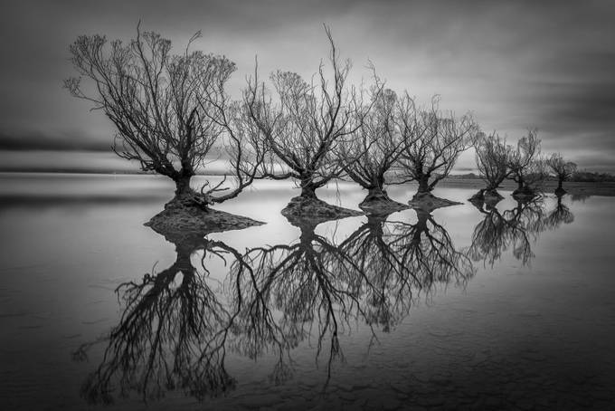 Reflection Row by jamierichey - A Black And White World Photo Contest