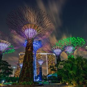Gardens by The Bay, Singapore by Night
