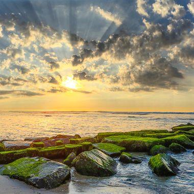 6-11-16 Sunrise 2