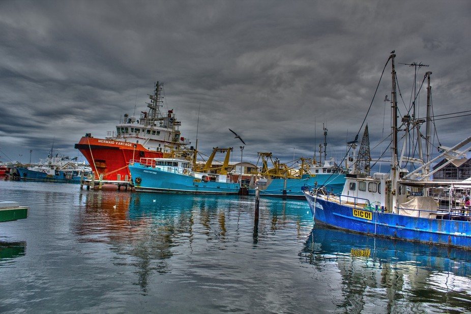 Docking in...Winters day.  docking in with fish of the day. Fremantle Port , Perth Western Australia