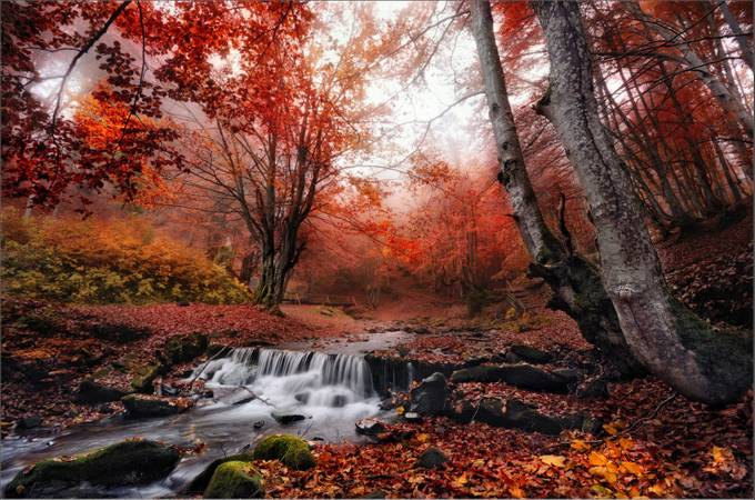 The charm of late autumn .. by vladsokolovsky - Streams In Nature Photo Contest