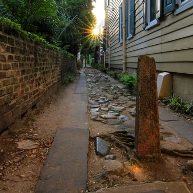 Alley off of Meeting Street located in historic Charleston, SC. I'm so lucky to live in such a great city to photograph.