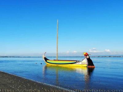 """Moliceiro"" Boat"