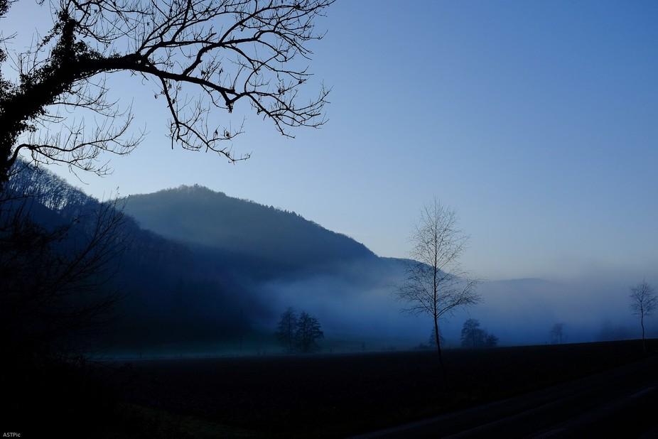 morning, fogg, first light