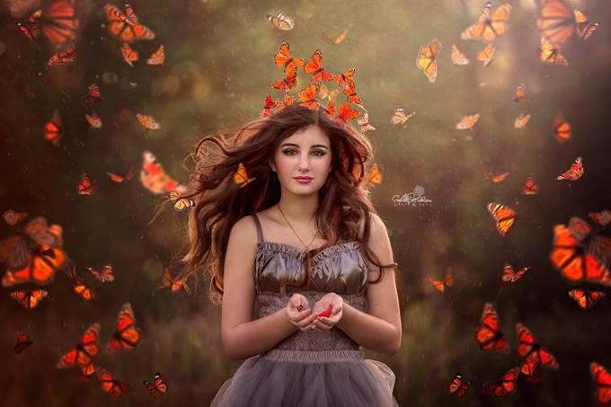Butterflies by AbbyMathison - Orange Tones Photo Contest