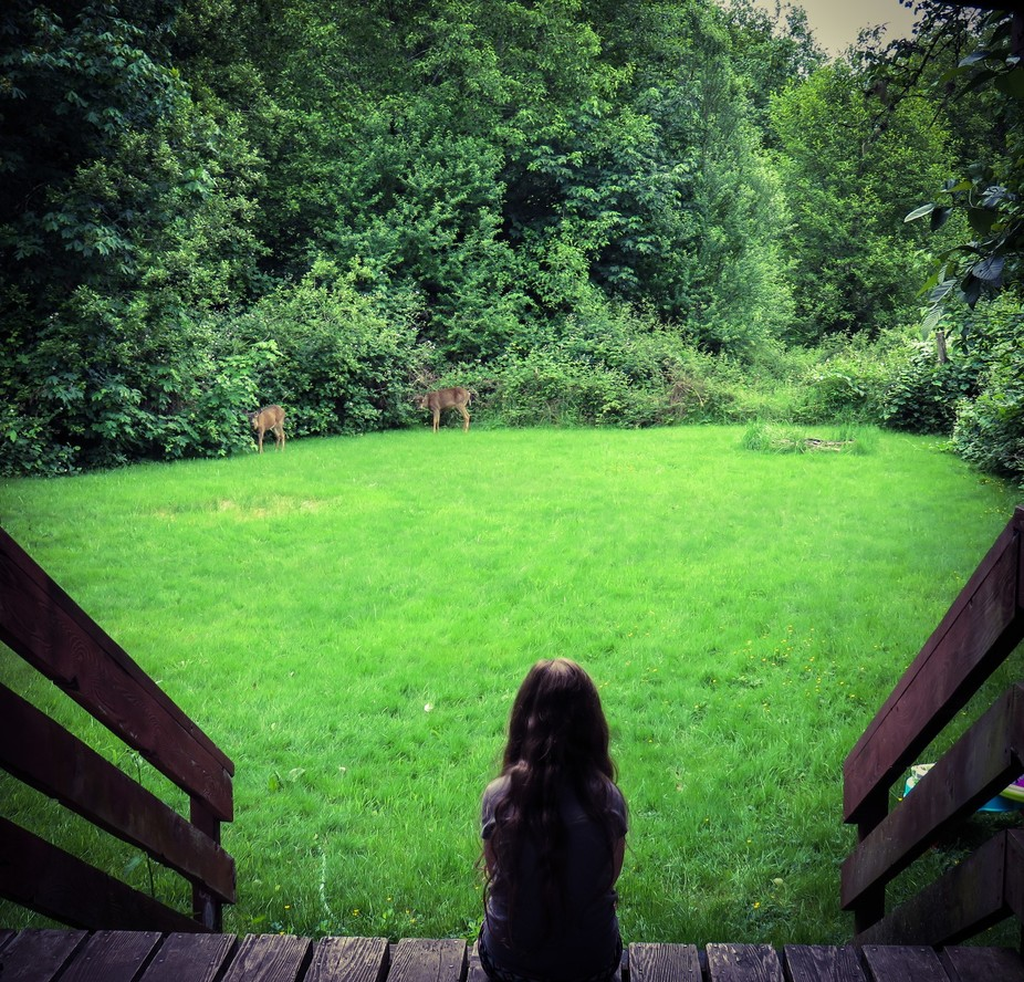 My oldest daughter watching the deer eat.