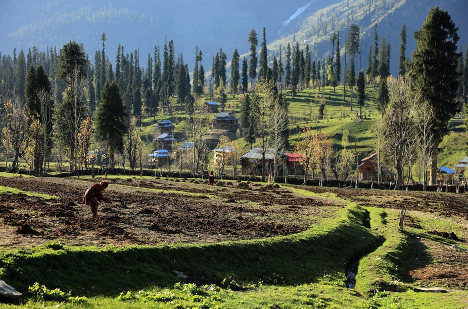 Arang Kel is a lush green village, hill station and tourist spot in Neelam valley, Azad Kashmi...