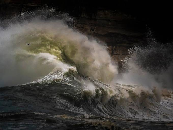 Rage by joe_menggolo - Our Natural Planet Photo Contest