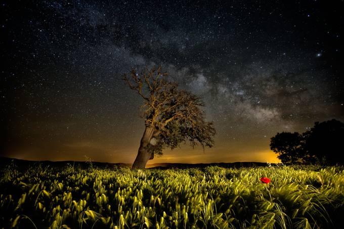 sleepwalker by MartaBorreguero - Long Exposure Experiments Photo Contest