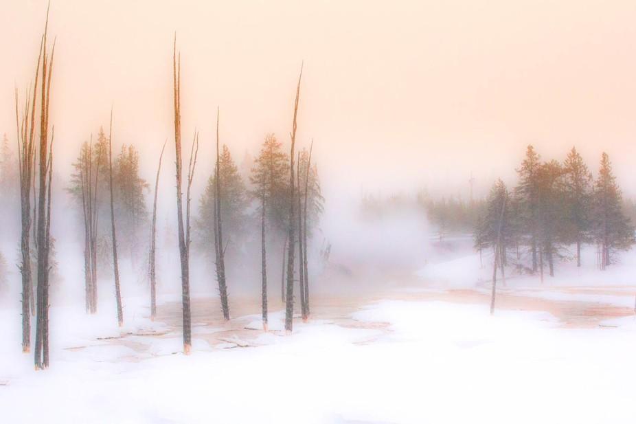 A Mid Winter\'s Dawn Dream