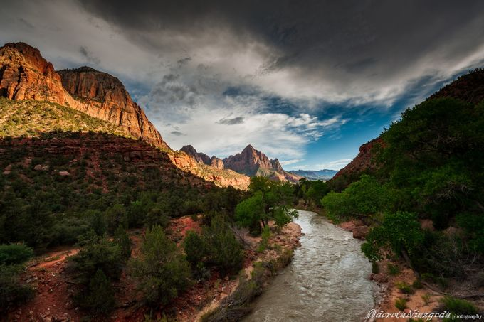 Zion National Park, Utah by Dorota_Niezgoda - Around the World Photo Contest By Discovery