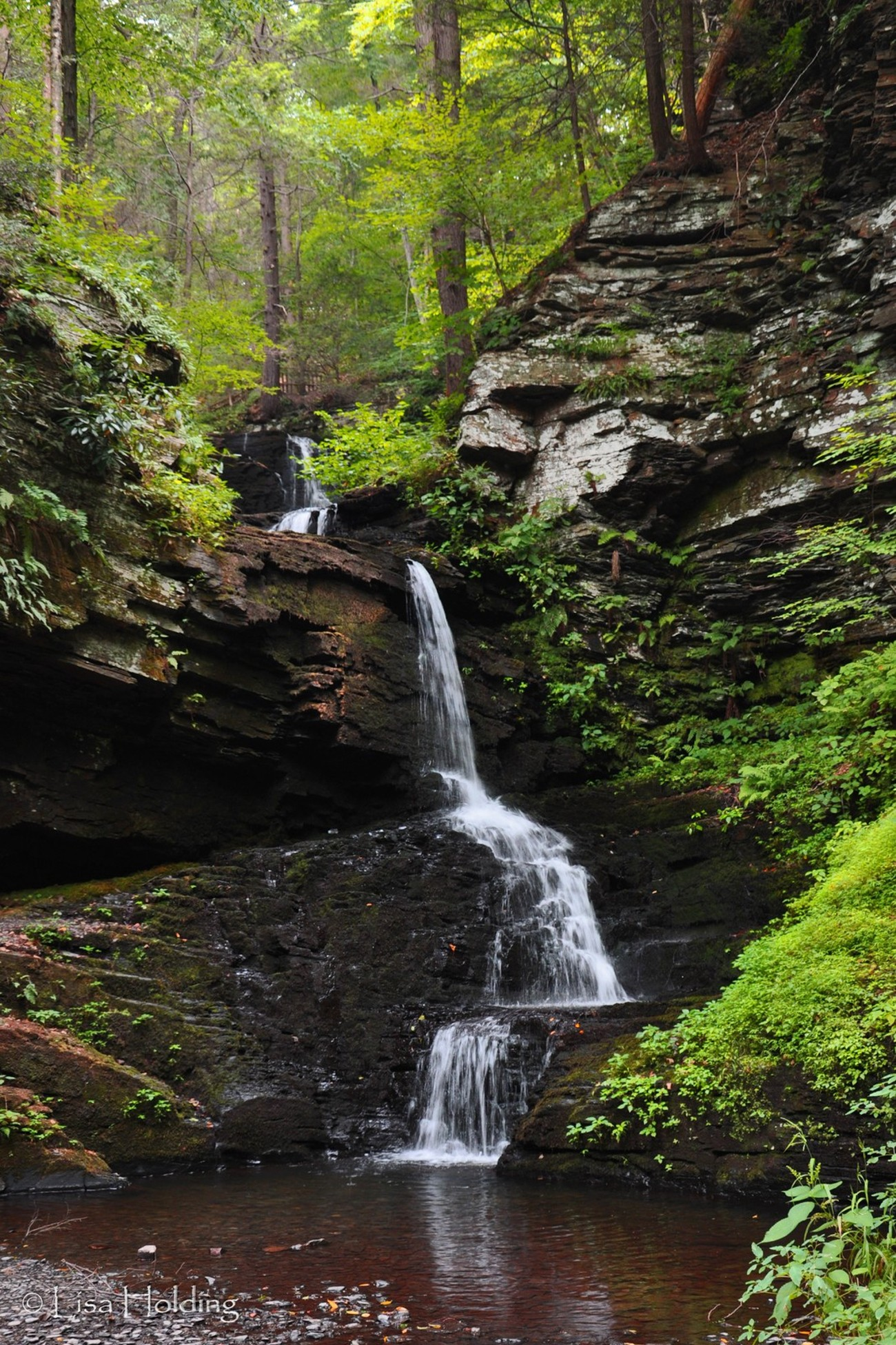 Bridesmaid Falls, at Bushkill Falls in the Pocono Mountains of PA.  Falls are usually much fuller, but the lighter flow gave the opportunity for a slightly different perspective.