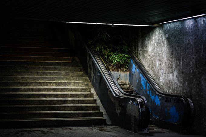 Overgrown Stairs by martinrosenkranz - Metro Stations Photo Contest
