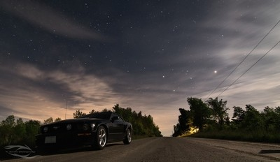 Mustang stars