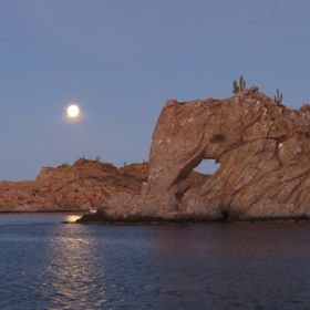 Can you see the elephant? Beauty of Baja.