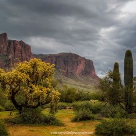 While there are very few rainy days here in Central Arizona, we do get them.  This was taken on a cooler and wetter day in the Superstition wilde...