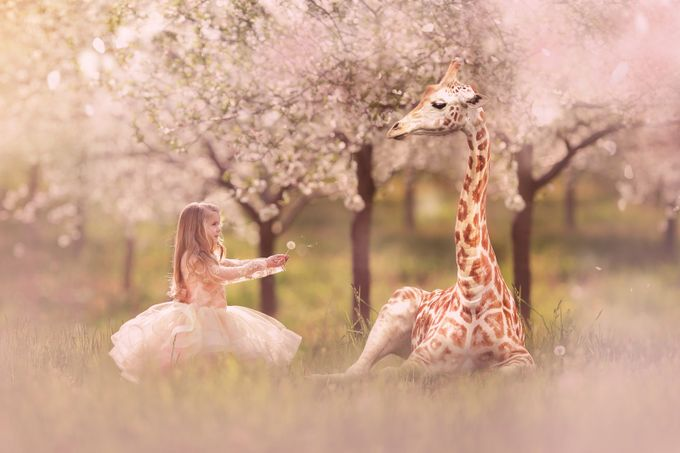 Sharing Is Caring by Annelisenicolephotography - Fairytale Moments Photo Contest
