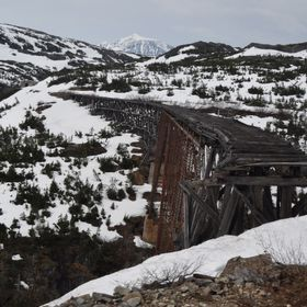We took a train ride up the mountain to a pass in Alaska and saw this interesting, old bridge, hence the photo.