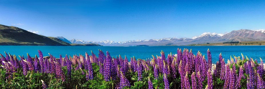 New Zealand was the first country I had  travelled to many moons ago and is someewhere i would lo...