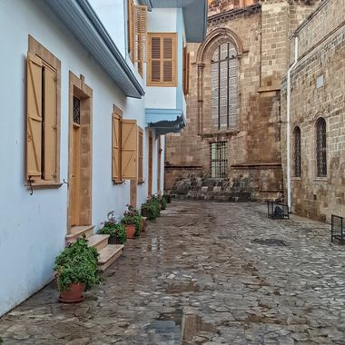 This photo was taken this year (2016) in, Nicosia, North Cyprus. It is just behind Selimiye Mosque.