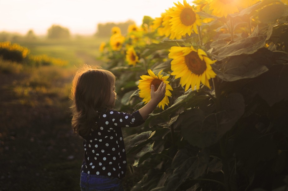 This is my daughter - we were driving around near our house and came across the most gigantic sun...
