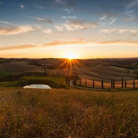 «Cypress Hill» Tuscany | Italy © Chantal Lichtenberg | Bonsai Fotografie Photo was taken in June 2016. Panorama of 7 frames with Canon EF17-40...