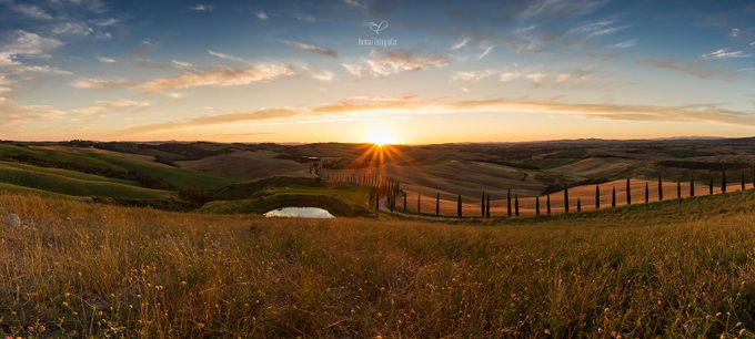 «Cypress Hill» by BonsaiFotografie - Life And Freedom Photo Contest