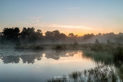 Foggy Sunrise Ravenvennen