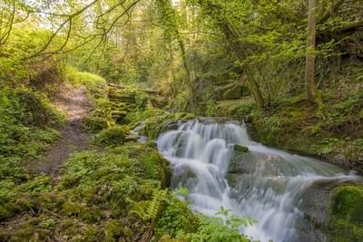 Samuel-Bailey-Badger Dingle Waterfall