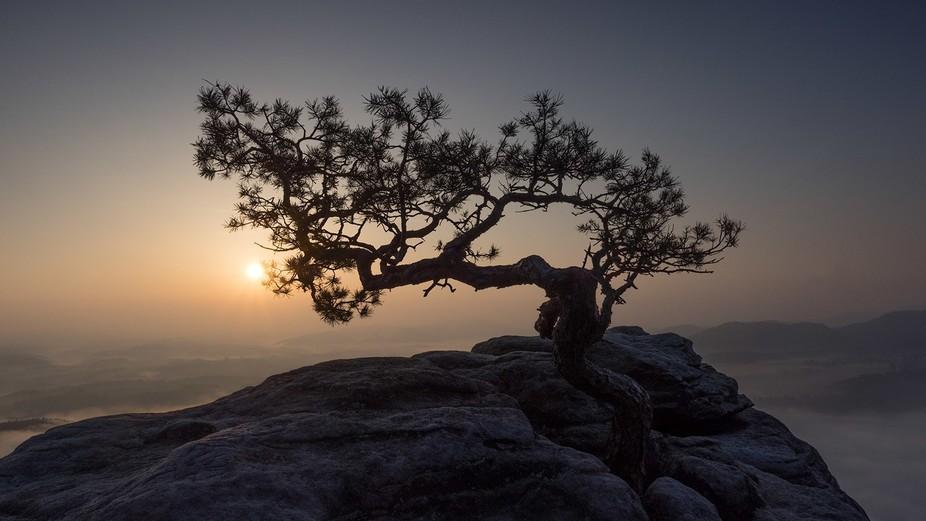 sunrise at Lilienstein
