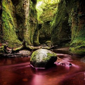 Finnich Glen Gorge, a 70 foot descent down steep stairs locally dubbed 'Jacobs ladder' to this beautiful red Sandstone Gorge, t...