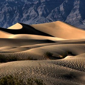 Mesquite Dunes in Death Valley National Park