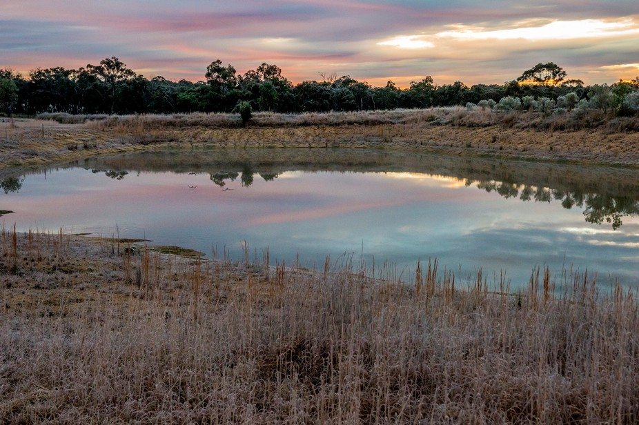 Taken on a frosty morning at Stanthorpe, Queensland while walking the dogs.