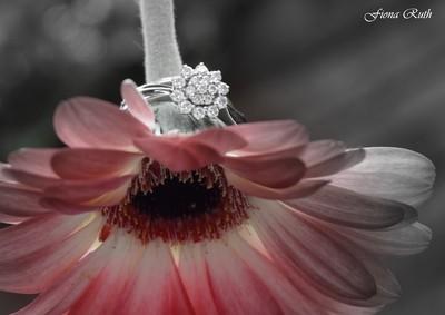 faded flower, bright diamonds!