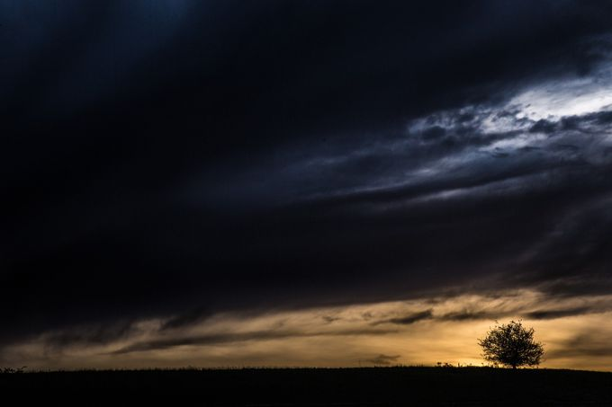 Sun Break Silhouette by tylerfisher - Silhouettes Of Trees Photo Contest