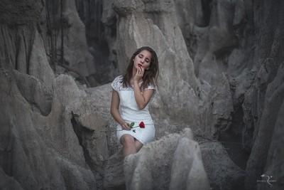 Memories of a rose