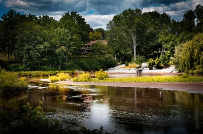 Silver-lake-swamp