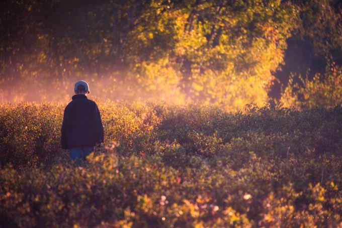 Explore Wascana Valley by IanDMcGregor - Creative Travels Photo Contest
