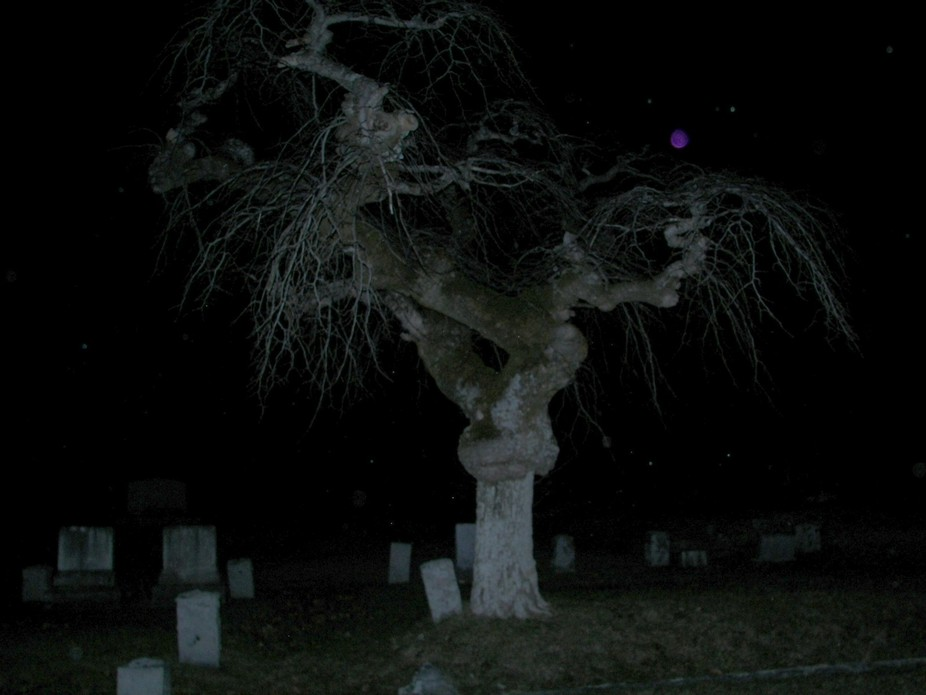 My husband and I were ghost hunting in a cemetery and I had always wanted to take night photos of...