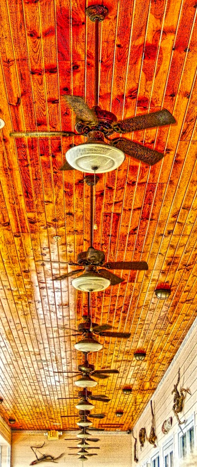 Ceiling Fans in a Row
