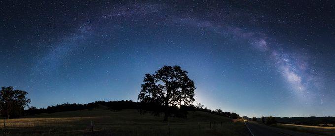 California Oak & Milkyway by sachinus2010 - Tree Silhouettes Photo Contest