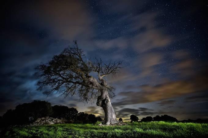 Noctambulist by MartaBorreguero - Cloudy Nights Photo Contest