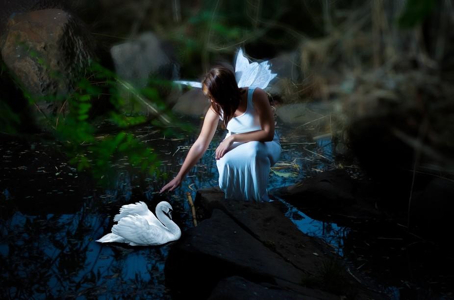 Fairytales 1