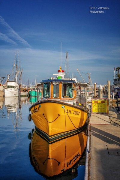 Santa Barabra Yacht Harbor, California USA