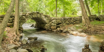 Yankee Foot Bridge